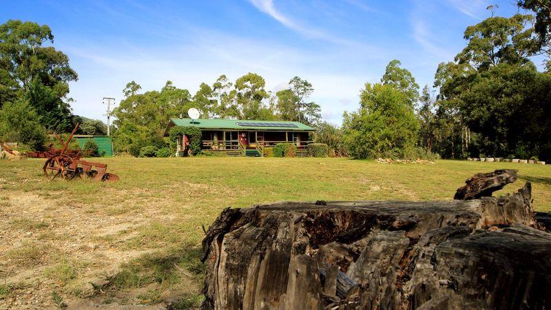 property image 53904