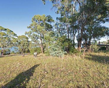 property image 56515