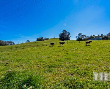 property image 552291