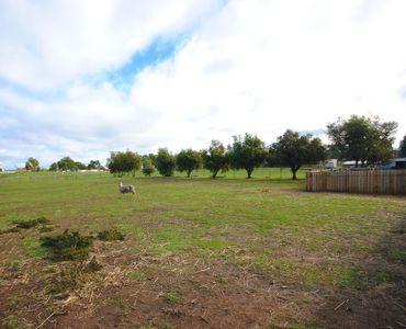 property image 58063
