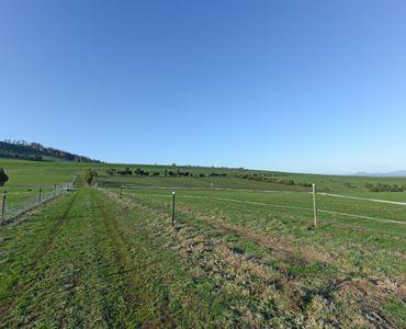 property image 58080