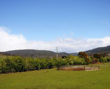 property image 565162