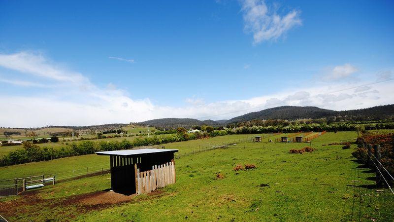 property image 565163