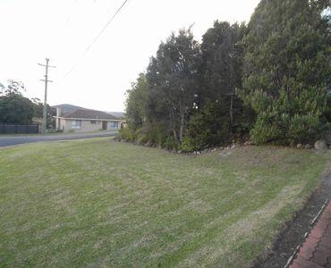property image 568561