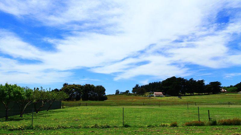 property image 90367