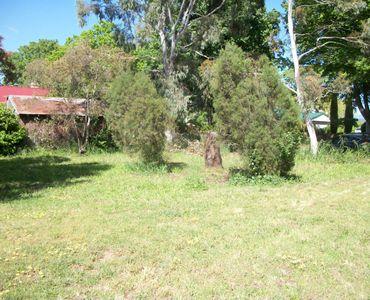 property image 90641
