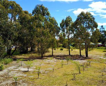 property image 593365