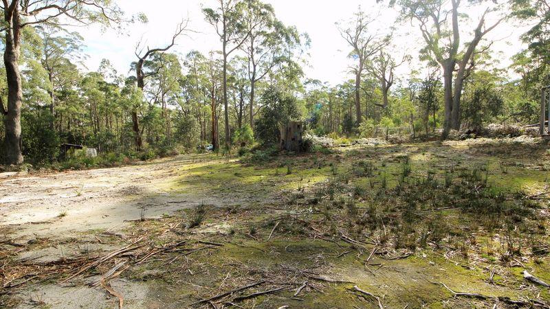 property image 64243