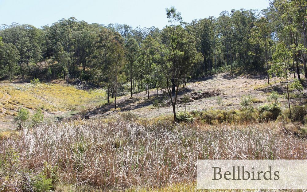 BELLBIRDS BUSH RETREAT