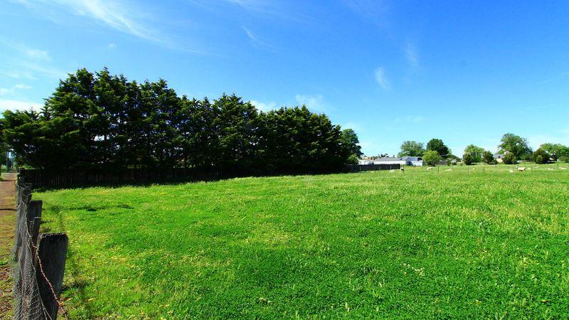 property image 90338
