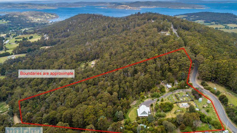 property image 655262