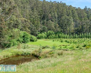 property image 658857