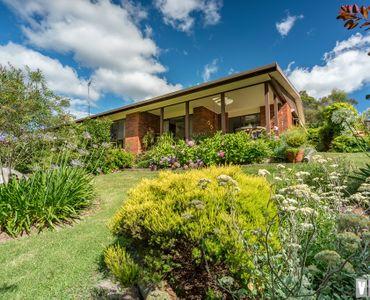 property image 1250775