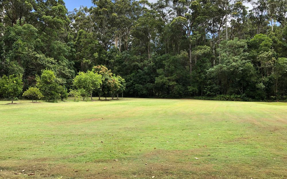 Tranquil and level 7965sqm block of land