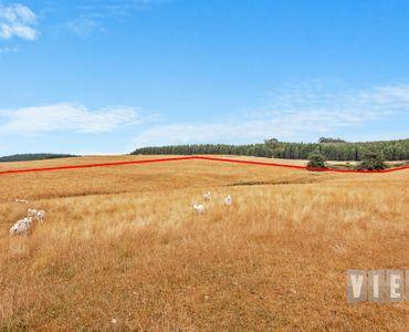 property image 708596