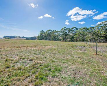 property image 735998