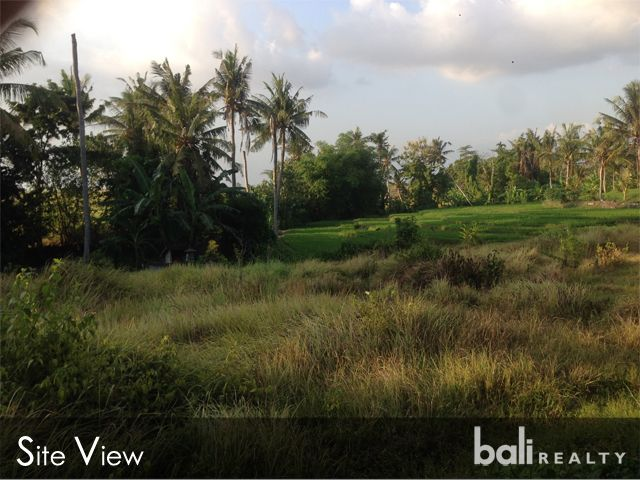 Huge Plot Of Riverside Land With Ricefield Views