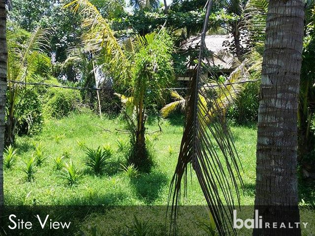 Perfect Land For Villa – 50m To The Beach