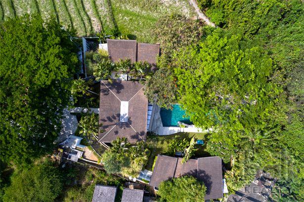 Luxurious Designer Villa In Canggu – Freehold