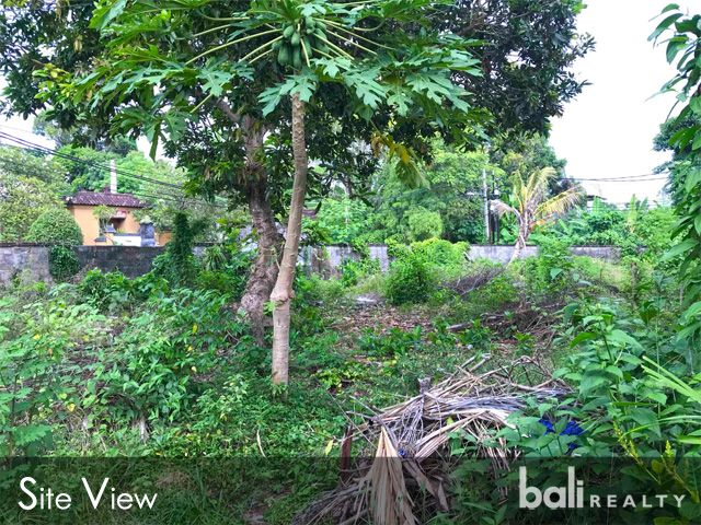 Perfect Freehold Land Beachside Sanur