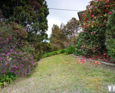 property image 947834