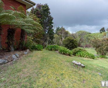 property image 947833
