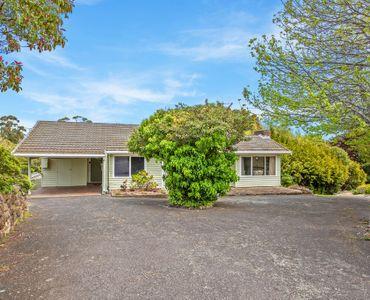 property image 954356