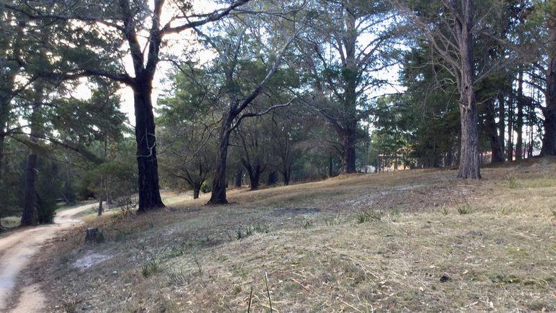 property image 1032487