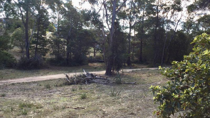 property image 1032481