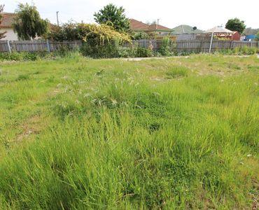 property image 1041856