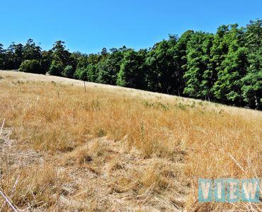 property image 113168