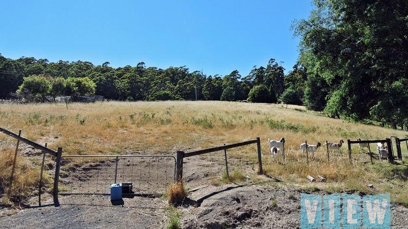 property image 113166