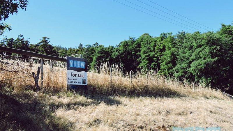 property image 113170