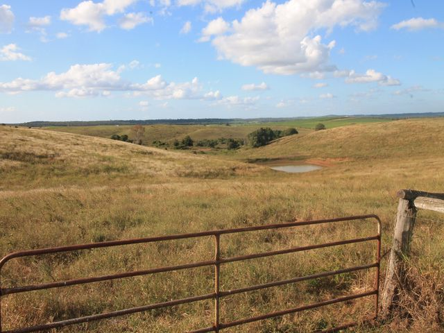 X CANE FARM ALMOST 200 ACRES IMPROVED GRAZING
