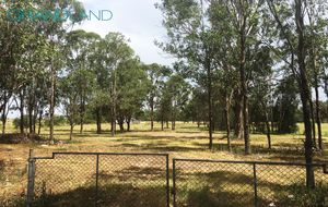 Market Gardening Use Only - 5 Acres!