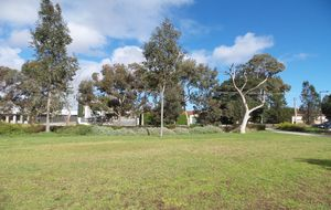 558 SQM LOT & 60.96 METERS DEEP x 9.15 METER FRONTAGE (approx) OPPOSITE AN OVAL & WILL SELL FAST