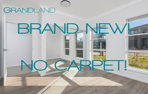 Brand New Luxury Living and No Carpet!